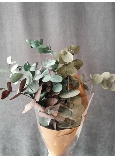 Kuru Çiçek Deposu Kuru Çiçek Şoklanmış Okaliptus Demeti Karışık Renk (50 Cm) Renkli